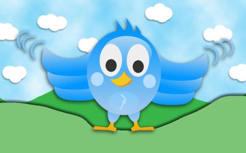 Ein blauer Vogel schaut frontal in die Kamera. Er erinnert an das Twitter Logo.