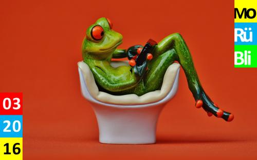 Ein Frosch liegt in einem weißen Sessel vor einer roten Wand und schaut in ein Handy.