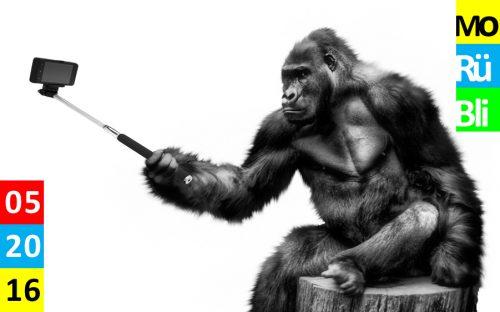 Ein Gorilla sitzt auf einem Baumstumpf und macht ein Selfie mit einem Selfiestick.