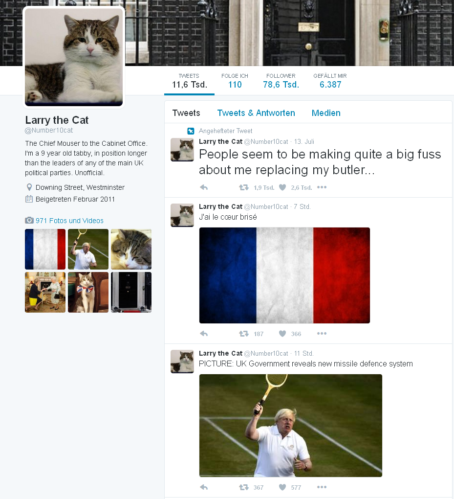 larry-chief-mouser-twitter2
