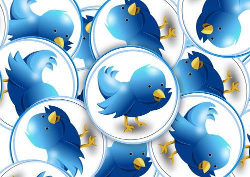 Mehrere Kreise mit blauen Vögeln. Es erinnert an ein nicht stilisiertes Twitter-Logo.