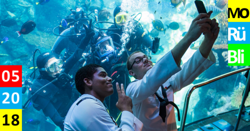 Zwei junge Männer machen Selfie vor einen Aquarium mit Tauchern, die in die Kamera lächeln und Peace zeigen.