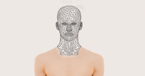 Die Büste eines Menschen. Der Kopf hat dabei eine Netzstruktur.